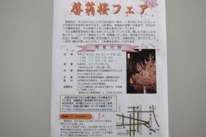 「啓翁桜フェア」開催のお知らせ