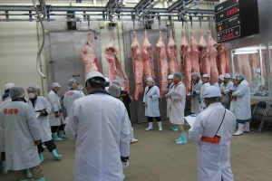 米沢牛枝肉市場に行ってきたんだっす!&米沢牛枝肉共進会・共励会・研究会褒章授与式