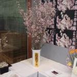 「啓翁桜フェア」に行ってきたんだっし!!