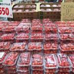 東京の上野駅で『山形産直市』開催!旬のさくらんぼが沢山だっけよ♪ さくらんぼはどうやって店頭に並ぶの?収穫から出荷までを取材してきたっすー