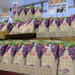おきたまオリジナルブランド商品第3弾『おきたまデラまめ』が発売開始しました!【JA山形おきたま】販売店舗を調査してきたっし。