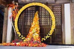 """置賜地区では、""""花""""のイベントや品評会が開催!!色とりどりのキレイな花で癒されてきたっし☆"""